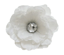 Product Image - NO STEM.  Jewel pic...