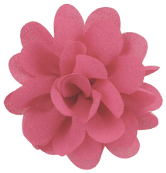 Product Image - Each petite flower ...